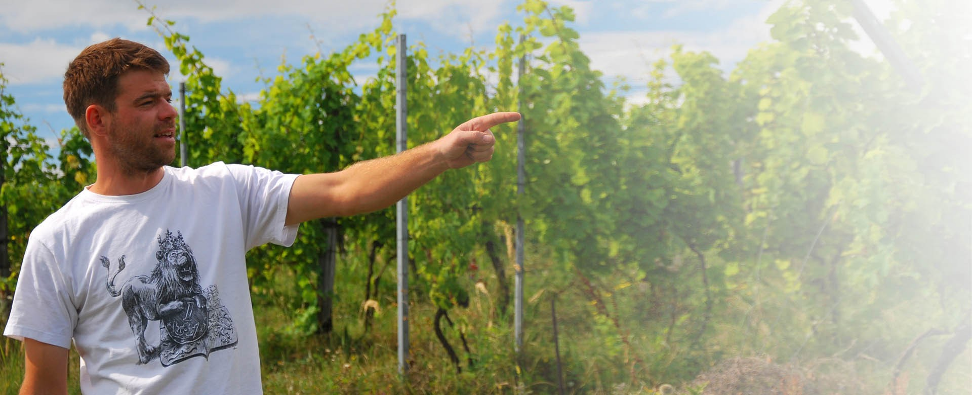 Vičické vinařství Mikulášek - rozhovor s bratry Mikuláškovými